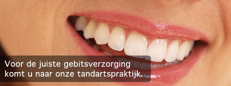 tandarts in Utrecht